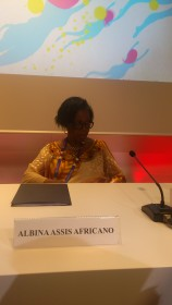 Albina Assis Africano