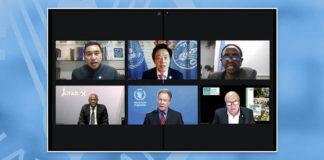 FAO: al via i lavori del Comitato per la Sicurezza Alimentare